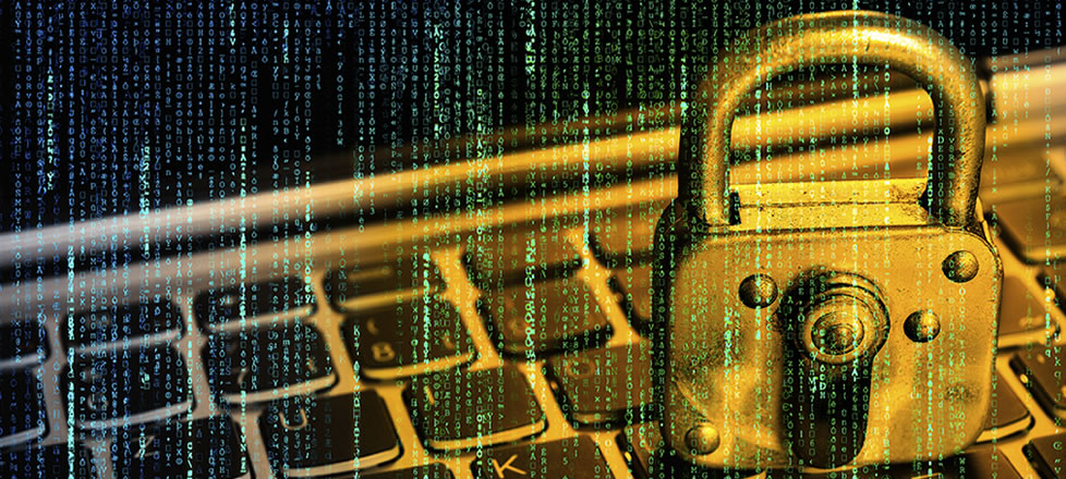 Security, Fraud and Risk: Basics, Strategy and the Bigger Picture